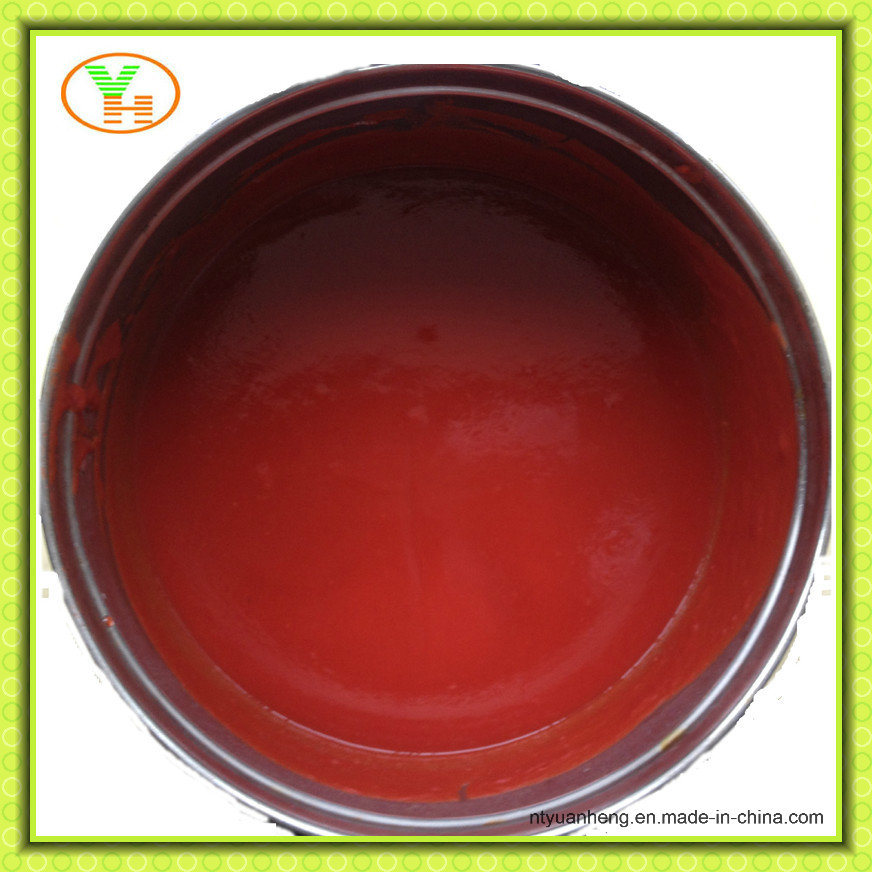 Canned Tomato Paste Wholesale Manufacturer OEM ISO Halal Food