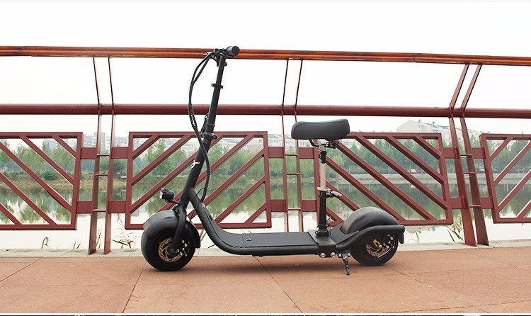 Electric Bike with 350W Motor, 48V/10ah Lithium