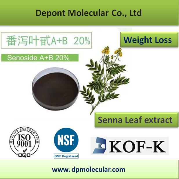 Senna Leaf Extract, Sennoside a+B 20% HPLC