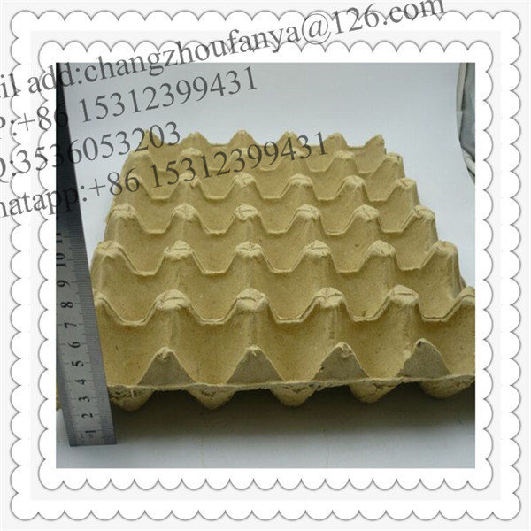 Egg Tray Mould/Recycled Pulp Paper Egg Trays