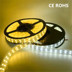 Double Row 5050 Silicone Tube Flexible LED Strip