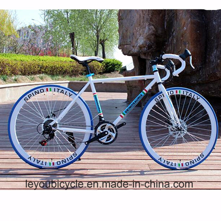 Cheap Carbon Racing Road Mountain Bike (ly-a-61)