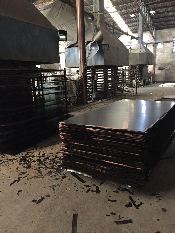 Film Faced Plywood, Brown Film with Printing Logo, Full Poplar Core, Mr Glue, 1220X2440X12mm