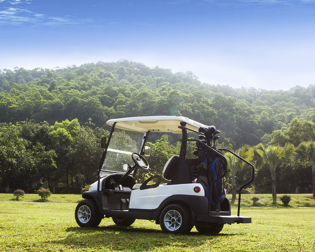 White Color 2 Seater Golf Cart with Caddie Plate