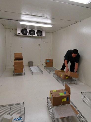 Food Cold Room/ Chiller/ Refrigerator