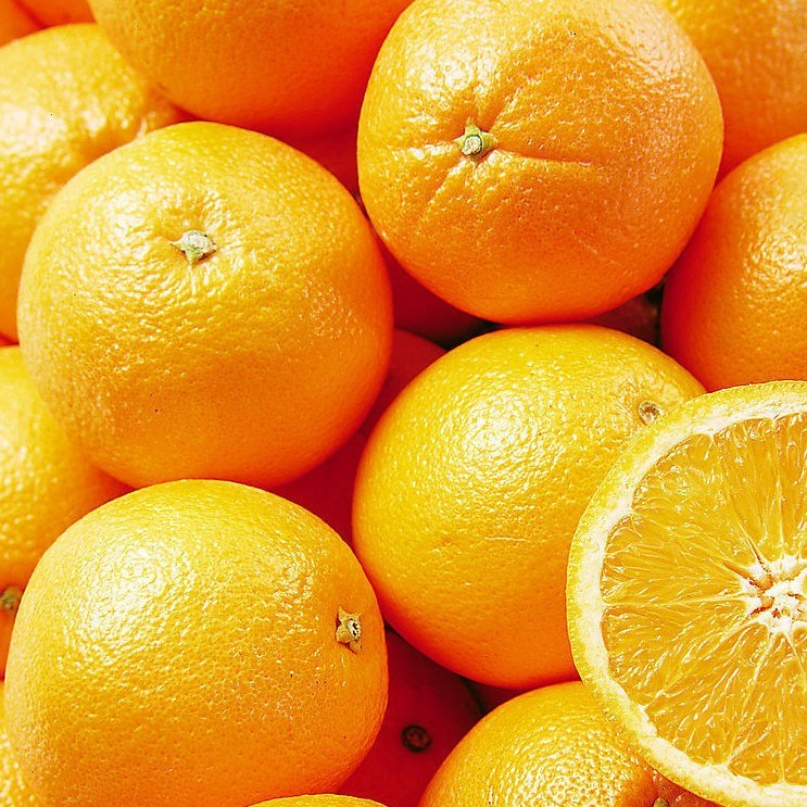 China Fresh Navel Orange Photos & Pictures - made-in