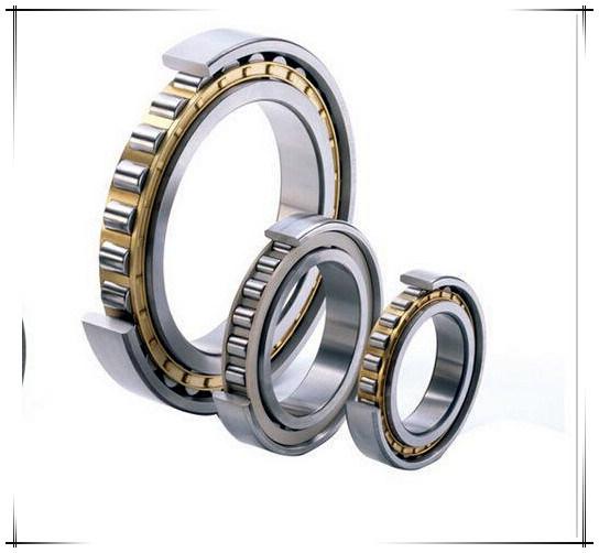 SKF Timken Double Steel Auto Parts Roller Bearing (N220)