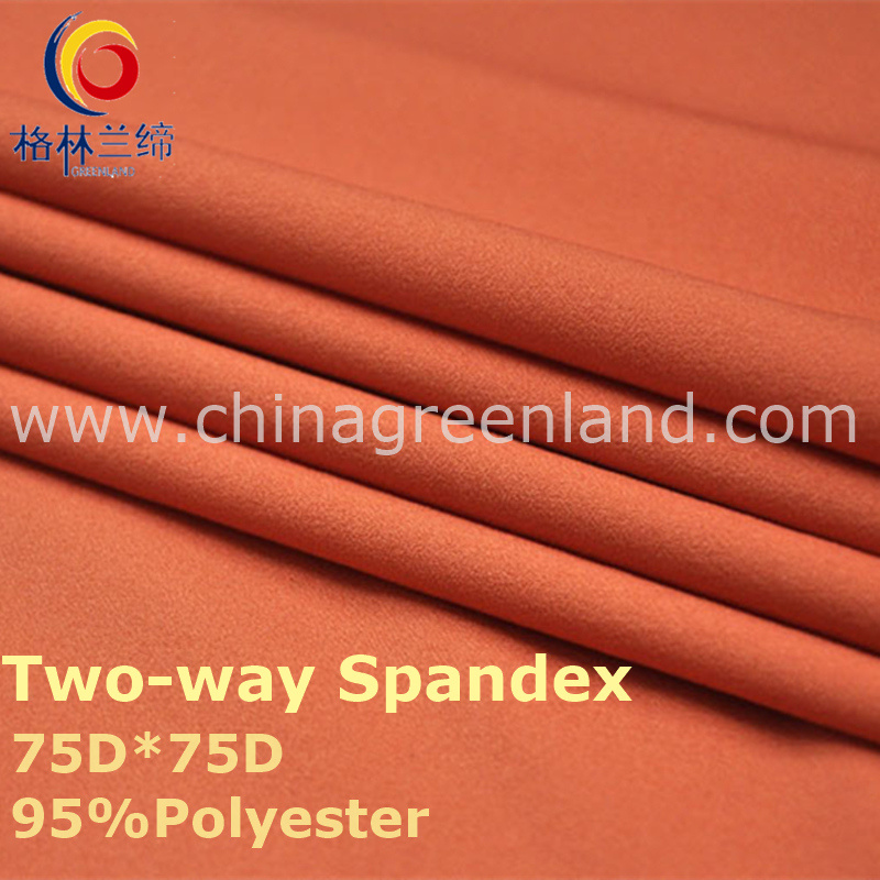 190t Polyester Spandex Dyeing Fabric for Shirt Garment (GLLML242)