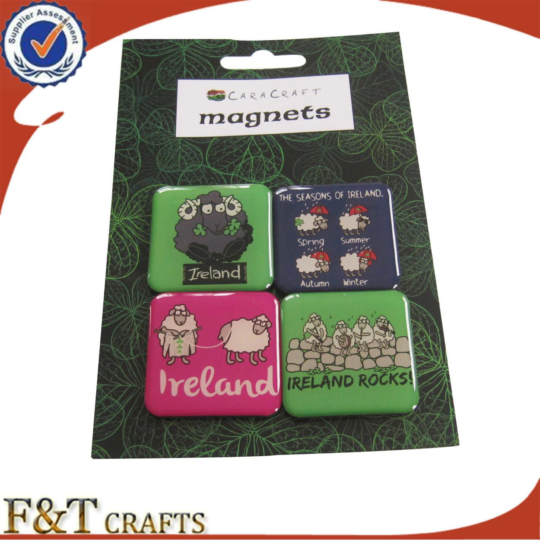 High Quality Custom Fridge Magnet (FTFM1501A)