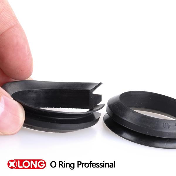 Rubber Viton Ring Va/Vs Seal for Pump