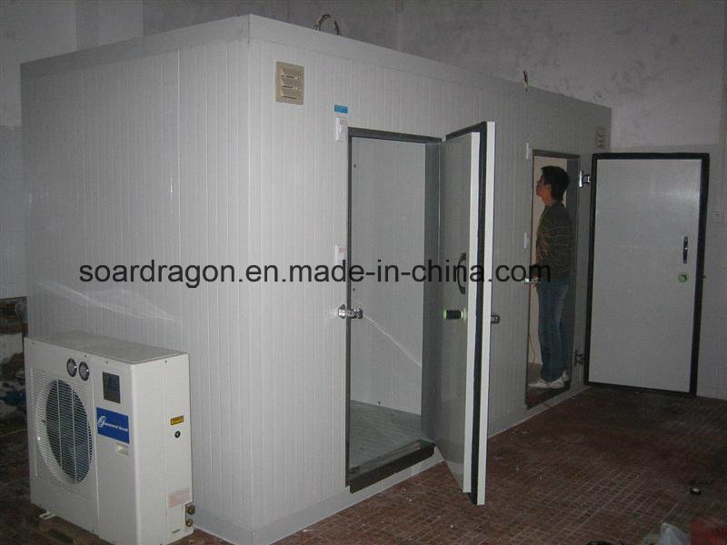 Fireproof Big Freezer Room for Logistics Use