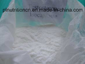 99% Purity Steroid Powder Testosterone Isocaproate (CAS No: 15262-86-9)