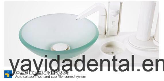 Fashion Dental Chair for Fashion Dentist
