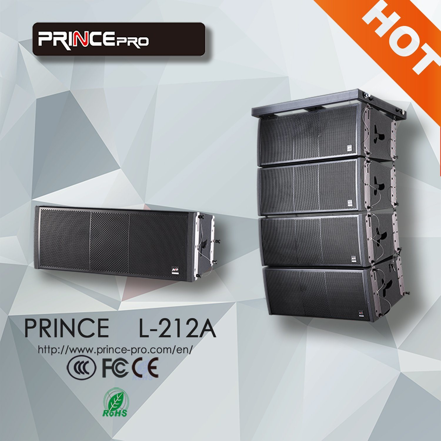 Dual 12 Inch Powerful Subwoofer for Line Array Speaker
