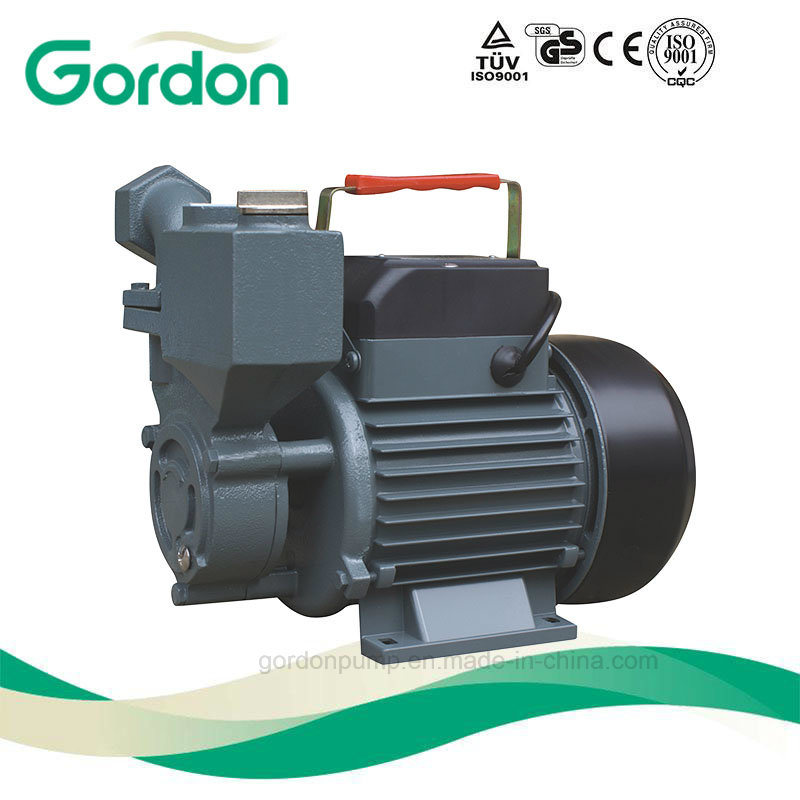 Electric Pond Water Pump with Terminal Box and Terminal Protector