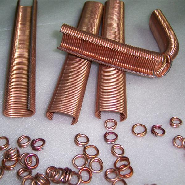C Ring Staples 15g 100b in China