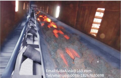 Burning Through Resistant Conveyor Belt