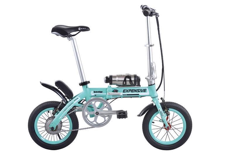 20inch 250W/350W Folding Foldable Electric Bike