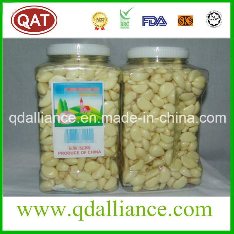 IQF Frozen Peeled Garlic with Good Price Kosher Certified