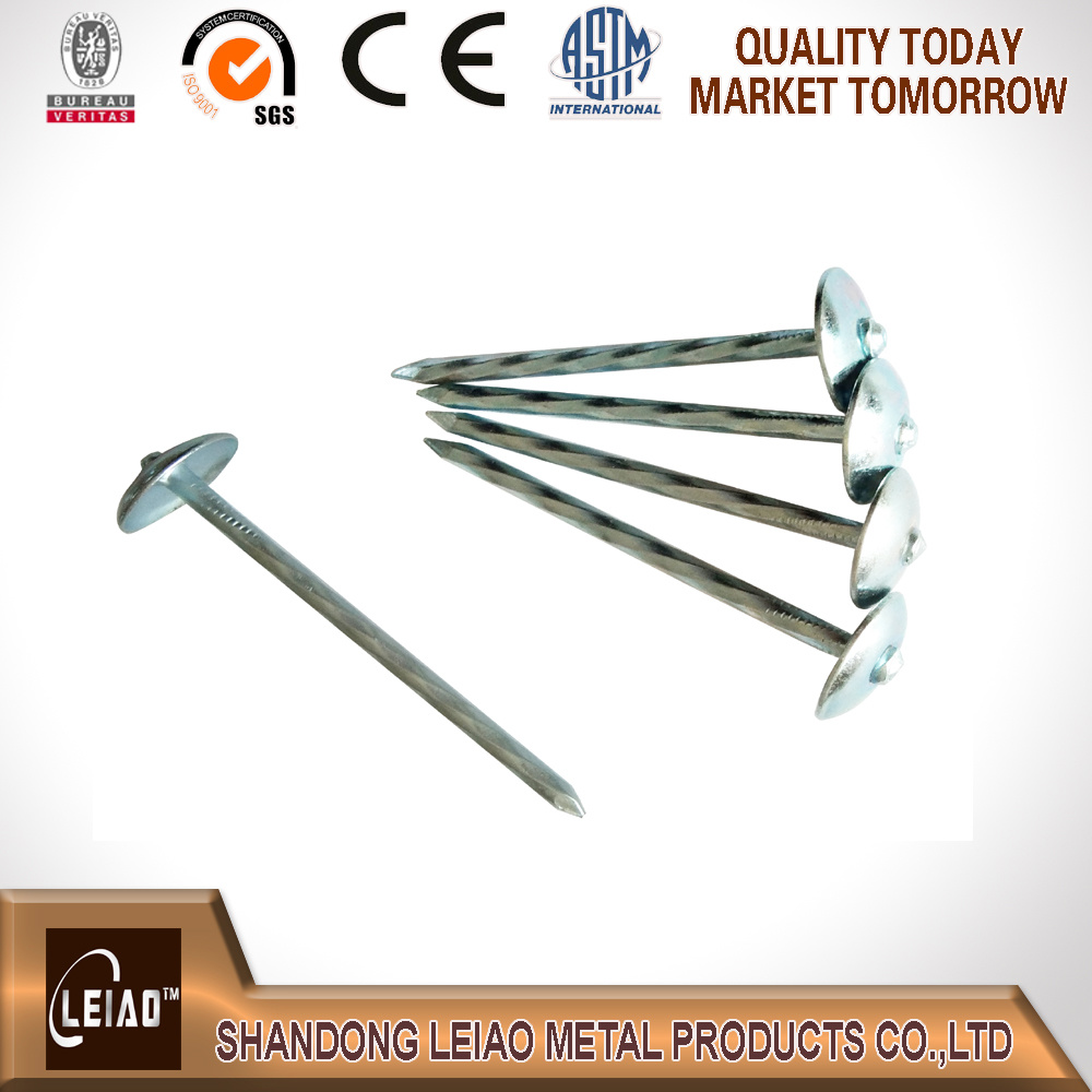 Umberlla Head Galvanized Roofing Nail
