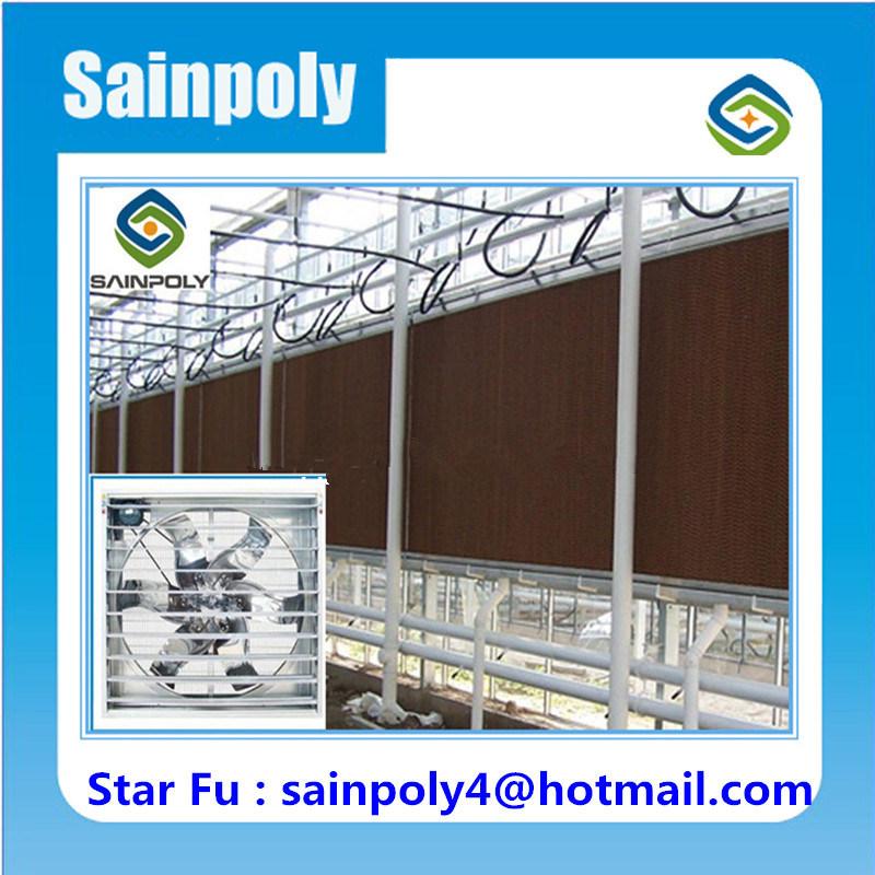 Aluminium Frame High Quality Glass Greenhouse for Sale