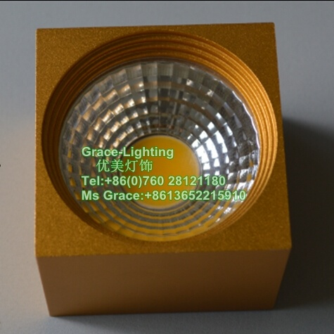 Professional LED Lighting COB Down Light LED Ceiling Lamp (GD-MZ3002-3W)