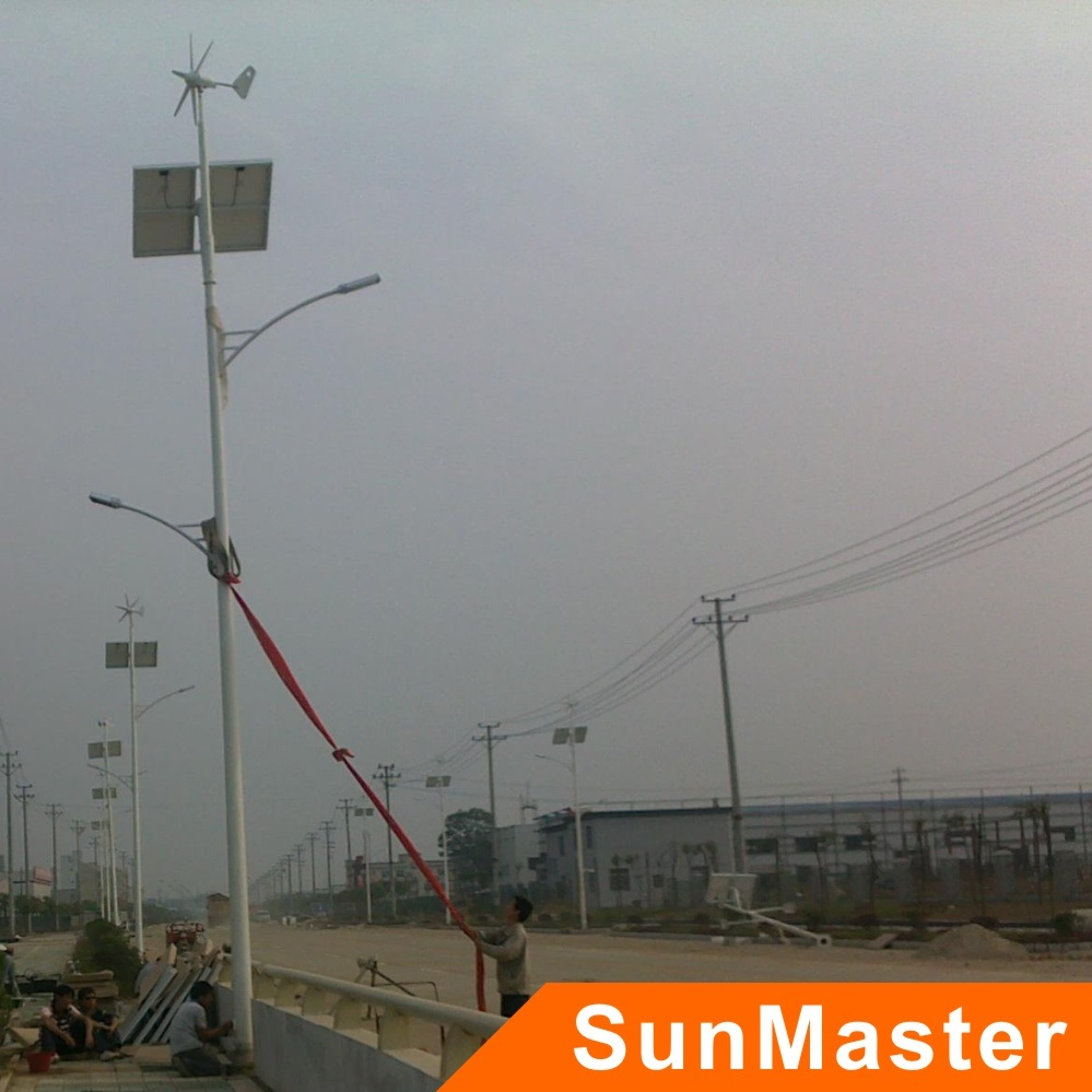 Wind and Solar Power Combination Streetlights (SFG01-30W)