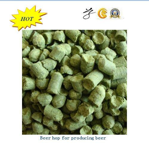 Fragrant Beer Hop for Producing Beer