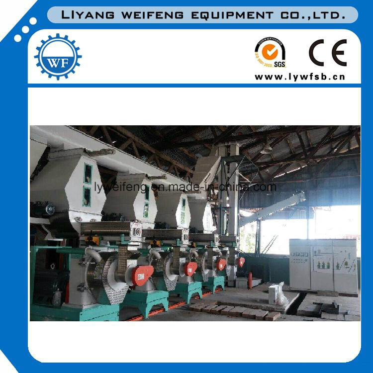 Cce/ISO Top Quality Complete Wood Pellet Line/Wood Pellet Mill Line