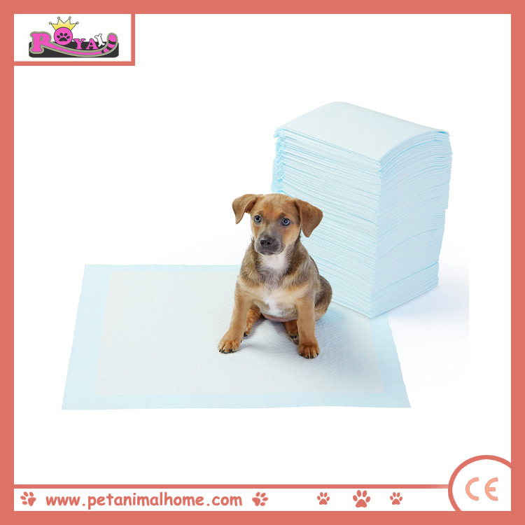 60*60cm Large Size Super Absorbency Puppy Training Pad
