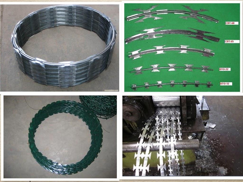 Galvanized and PVC Coated Razor Wire