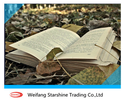 Light Weight Offset Paper 60-120g for Printing