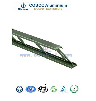 Aluminium Extrusion Profile Ladder with ISO9001&Ts16949 Certificated