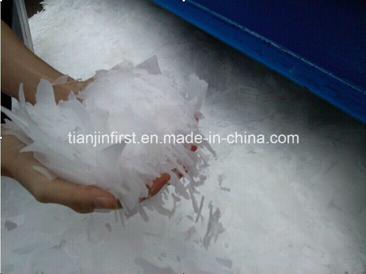 Ice Maker Machine for Food Preservation and Processing