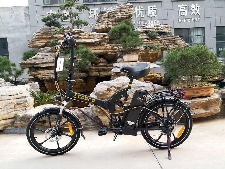 Rear Shcok Folding Ebike (TDN05Z)