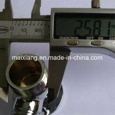 Inspection Service/Quality Control/Final Inspection for Accessories