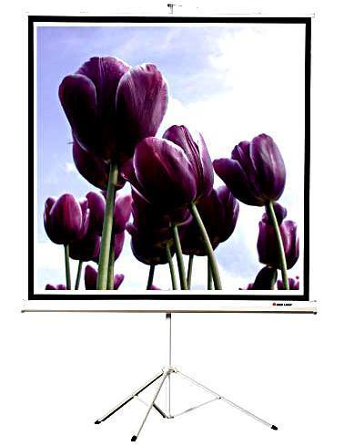 84 Inch Portable Movable Office Projector Matte White Tripod Projection Screen