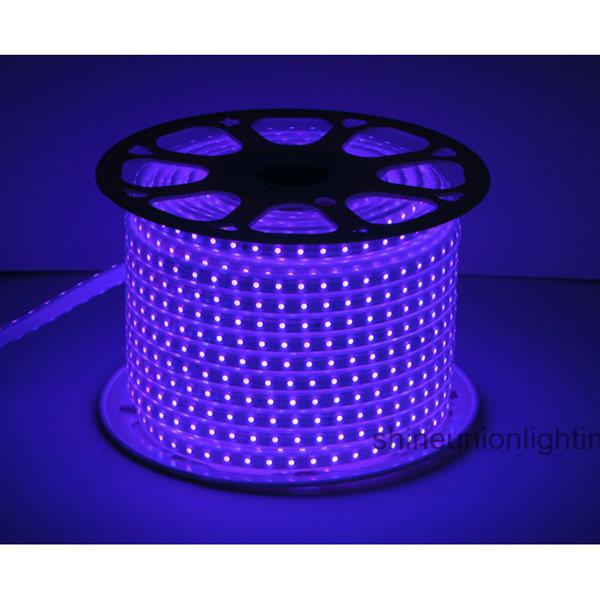 High Voltage LED RGB LED Strip Light -Su-Hvsmd5050-72PCS-RGB/Pink 10W/M