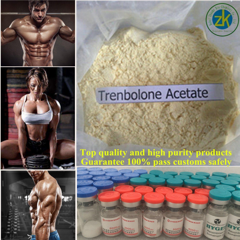 GMP Manufacturer Hot Sale 99.5% Trenbolone Acetate Methenolone Drostanolone Propionate Masteron