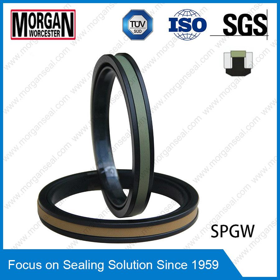 High Pressure Spgw/Phd Type Hydraulic Cylinder Piston Seal Ring