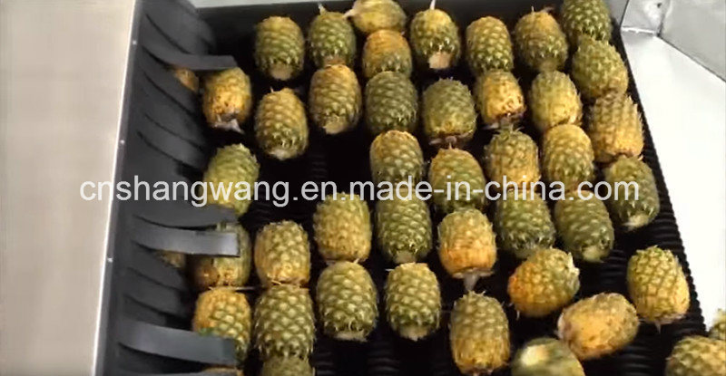 Complete Pineapple Juice Processing Line/Equipment