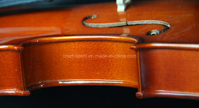Spruce Solidwood Popular Violin 1/8-4/4 (N-V02)
