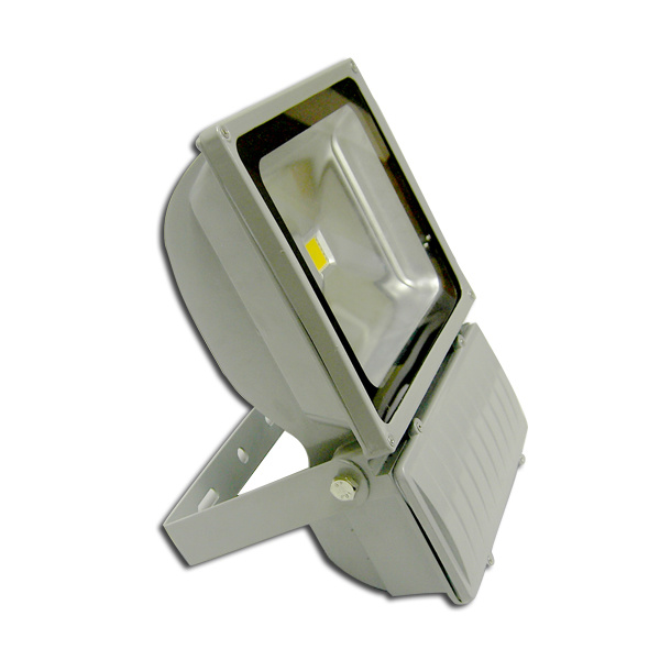 Stadium 100W Outdoor LED Flood Lighting