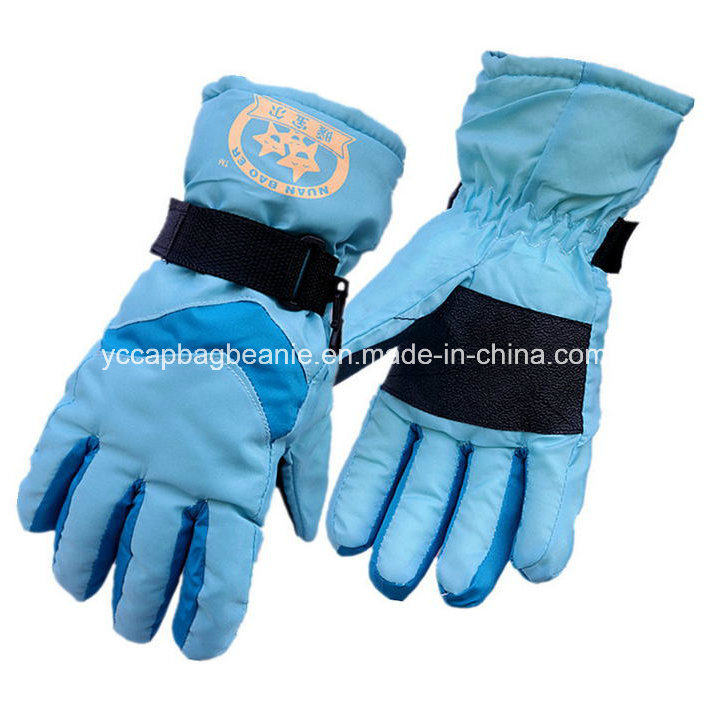 Ladies Wnter Glove, Ski Glove