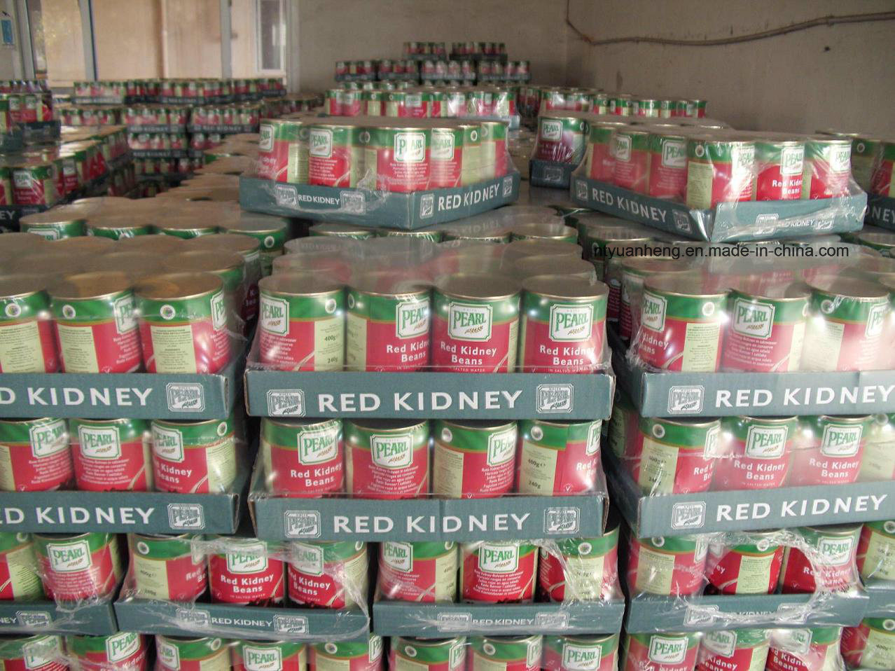 Can of Red Kidney Beans and Delicious Dried White Kidney Beans for Exporting