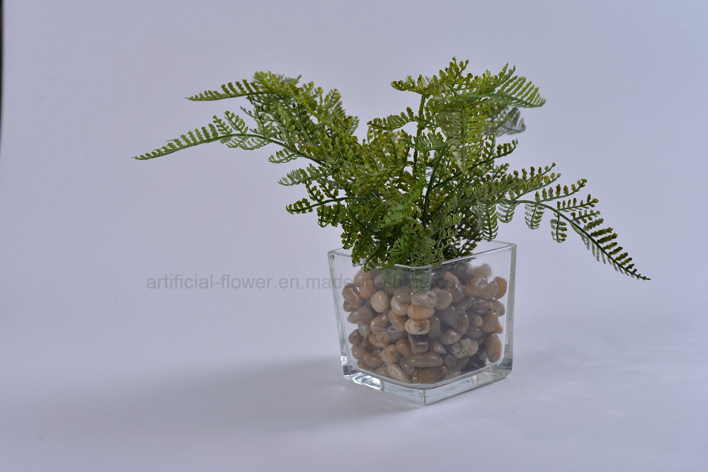 Kinds of Artificial Plants (Crowndaisy, celery etc) in Glass Potted for Decoration