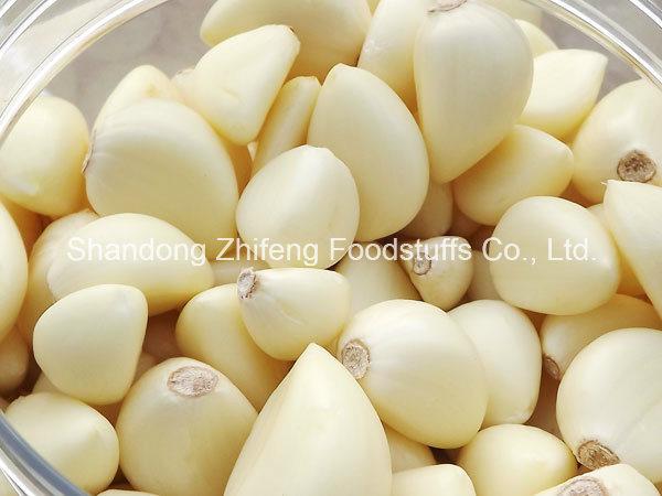 5.5cm Chinese Pure White Fresh Garlic