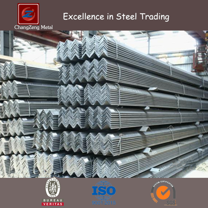 ASTM A36 Ss400 Hot Rolled Angle Steel (CZ-A08)