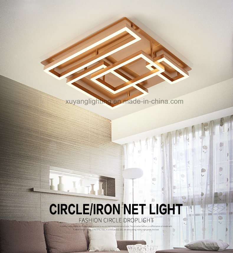 LED Indoor Ceiling Lamp for Decoration, Decorative Ceiling Light for House