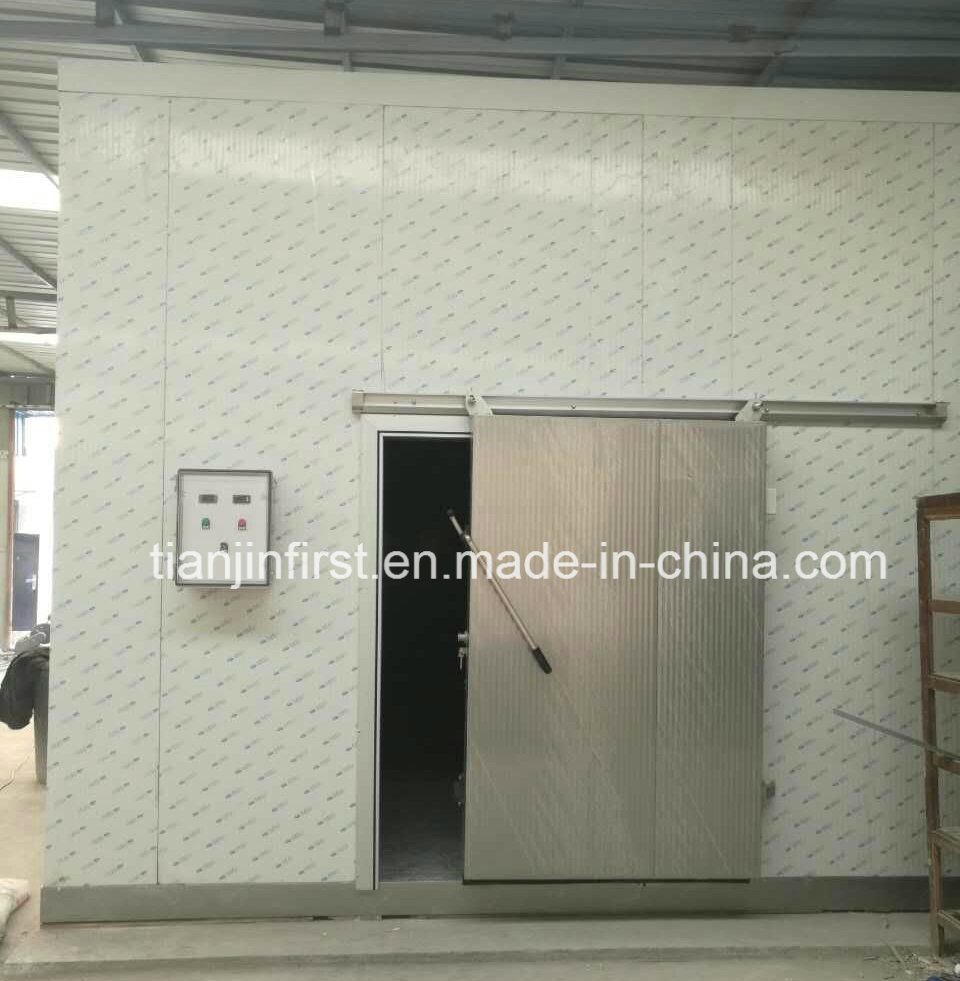 Cold Room for Fruit and Vegetable /Meat Cold Storage